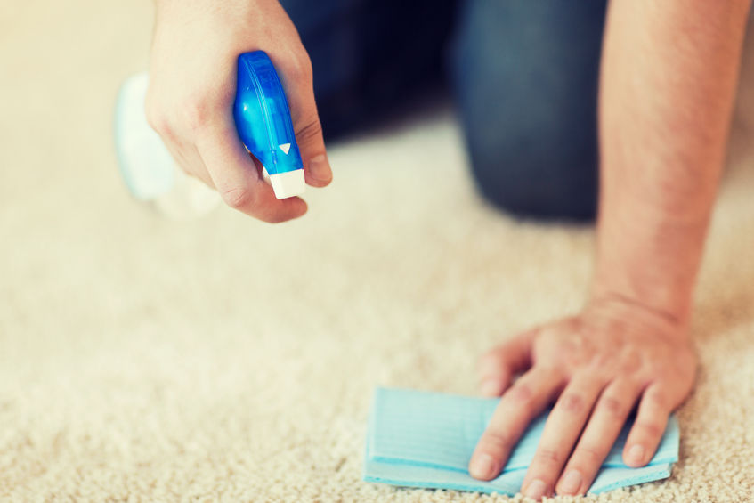 35794694 - cleaning and home concept - close up of male cleaning stain on carpet with cloth