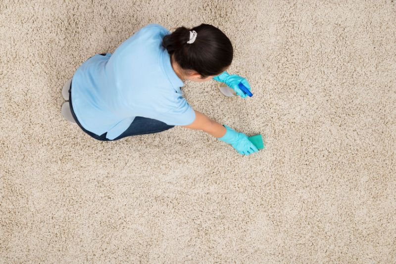 44714225 - young woman cleaning carpet with detergent spray bottle and sponge