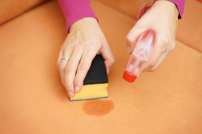 36086172 - professional cleaner is cleaning stain on sofa with spray bottle and sponge